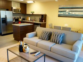 Beautiful 1Bd near everything - San Mateo vacation rentals