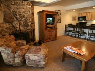 Gorgeous 1 BR & 1 BA Condo in Aspen (Aspen 1 BR & 1 BA Condo (Lift One - 104 - 1B/1B)) - Aspen vacation rentals