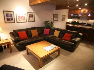 Nice Condo with 2 Bedroom/2 Bathroom in Aspen (Aspen 2 BR/2 BA Condo (Lift One - 102 - 2B/2B)) - Aspen vacation rentals