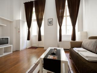Friendly apartment near attractions and metro - Budapest vacation rentals