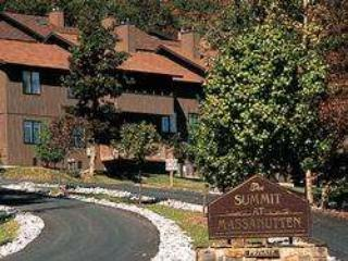 Summitt at Massanutten - Massanutten vacation rentals