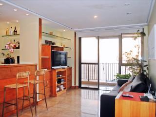 AMAZING CITY & SEA VIEW 2-BDR A1-004 - Rio de Janeiro vacation rentals