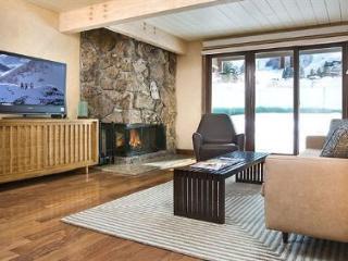 Fabulous Condo in Aspen (Aspen 1 BR, 1 BA Condo (Lift One - 209 - 1B/1B)) - Aspen vacation rentals