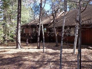 Pinetop cabin - Pinetop vacation rentals