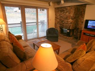 Heavenly 2 Bedroom/2 Bathroom Condo in Aspen (Nice 2 BR/2 BA Condo in Aspen (Lift One - 308 - 2B/2B)) - Aspen vacation rentals