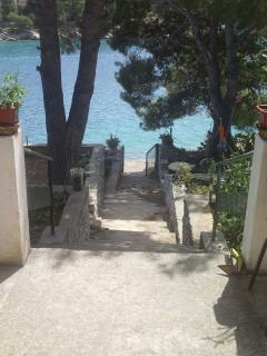 5718  A1(4) - Cove Osibova (Milna) - Cove Osibova (Milna) vacation rentals