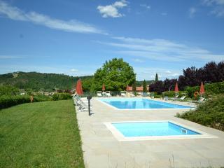 Agriturismo Buonriposo - House  La Vite - Montaione vacation rentals