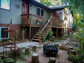 The 8th Street Retreat - Carbondale vacation rentals