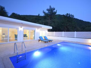 Üzümlü Secruded Villa /2bedrooms / 5 nightmin stay - Kalkan vacation rentals