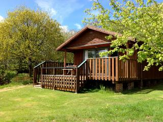 Nice 2 bedroom Chalet in Winkleigh - Winkleigh vacation rentals