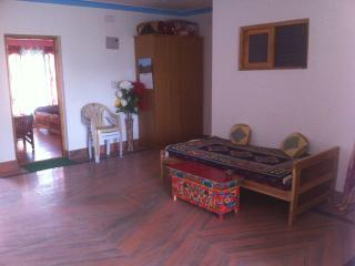 Charming 6 bedroom Leh Bed and Breakfast with Long Term Rentals Allowed (over 1 Month) - Leh vacation rentals