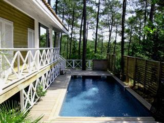 Villa de style colonial au coeur de la pinède avec - Lacanau-Ocean vacation rentals