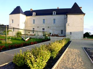 Bright 5 bedroom Gite in Chinon - Chinon vacation rentals