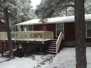 Cozy, family-friendly cabin - Pagosa Springs vacation rentals