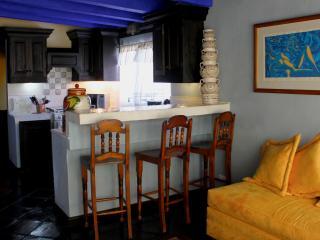 """La Casa de Laura Apts/Suites """"El Rey de Chocolate"""" - San Miguel de Allende vacation rentals"""