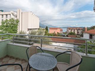Apartments Ilic - Studio with Balcony 1 - Bijela vacation rentals
