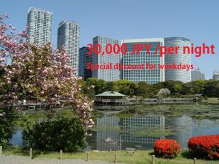 Elite Tower suite few steps away from Shiodome Stn - Minato vacation rentals