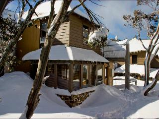Sun Apartments - Mt Hotham - Cedar & Stone Chalet - Mount Hotham vacation rentals