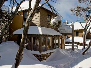 Sun Apartments - Mt Hotham - Cedar & Stone Chalet - Mount Hotham vacation rentals