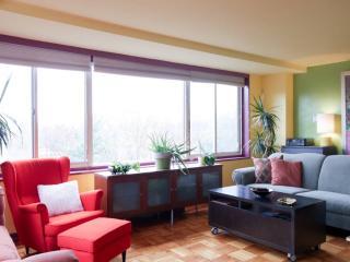 Cozy Condo in Georgetow/Glover Park - Washington DC vacation rentals