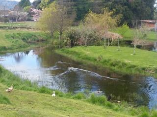 Romantic 1 bedroom Ohakune Cottage with Corporate Bookings Allowed - Ohakune vacation rentals