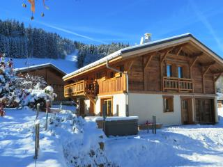 Cozy 3 bedroom Chalet in Saint-Nicolas-de-Veroce - Saint-Nicolas-de-Veroce vacation rentals