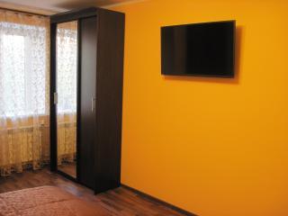 Romantic 1 bedroom Apartment in Samara - Samara vacation rentals