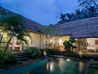 romantic cute house in ubud - Petulu vacation rentals