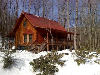 Cozy 2 bedroom Cabin in Todd - Todd vacation rentals