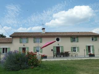 Adorable 5 bedroom Gite in Le Vigeant - Le Vigeant vacation rentals