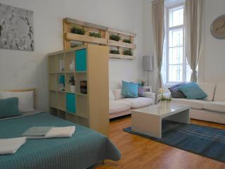 Hi5 Apartment 10 - Budapest vacation rentals