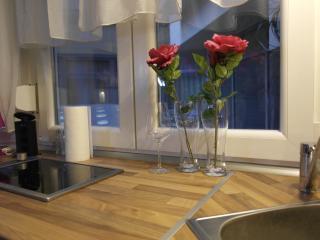 Hi5 Apartment 27 - Budapest vacation rentals