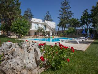 the garden of the caroob trees 100 m from the sea - Donnalucata vacation rentals