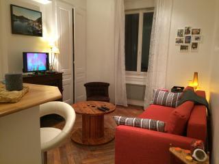 T2 bel ancien de 40 m² sur Lyon Tolstoï - Villeurbanne vacation rentals