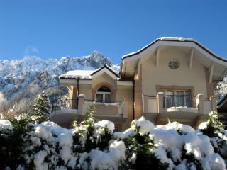 Chamonix Apartments - FloriaA - Chamonix vacation rentals