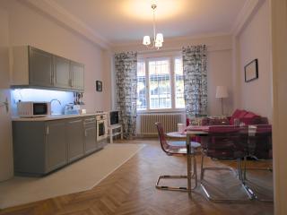 Hi5 Apartment 38 - Budapest vacation rentals