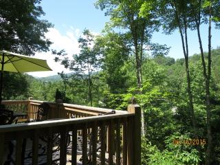 Nice Chalet with A/C and Long Term Rentals Allowed (over 1 Month) in Bryson City - Bryson City vacation rentals
