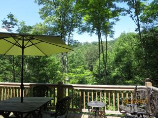 Nice Chalet in Bryson City with Internet Access, sleeps 6 - Bryson City vacation rentals