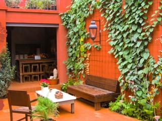 3 bedroom House with Internet Access in San Miguel de Allende - San Miguel de Allende vacation rentals