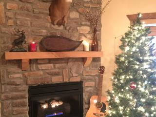 Luxury Christmas Rustic Lodge close to SDC! - Branson West vacation rentals