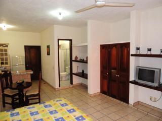 Cozy Suite Caleta in Old Town - Puerto Vallarta vacation rentals