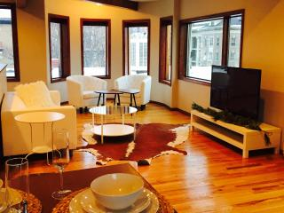 Penthouse , Capitol Hill , Uptown , Affordable - Denver vacation rentals