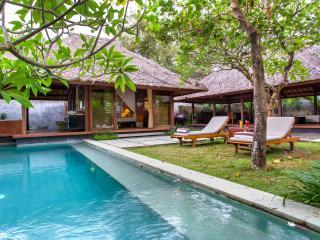 Nice Villa with Internet Access and A/C - Denpasar vacation rentals
