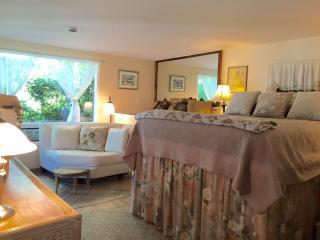Lovely 1 bedroom Condo in Kamuela - Kamuela vacation rentals
