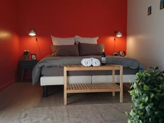 chambre d'hôtes dans une magnifique maison - Rabastens vacation rentals