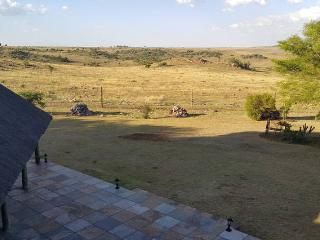 Game Retreat – Within the Perimeter of the Rhino a - Krugersdorp vacation rentals