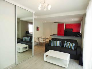 1 bedroom center close Palais and beaches CV5 - Cannes vacation rentals