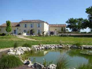 Plegassous Main House and attached Cottage - La Romieu vacation rentals