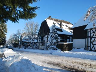 Romantic 1 bedroom Apartment in Winterberg - Winterberg vacation rentals
