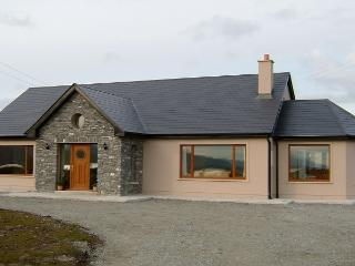 Beautiful 3 bedroom Kenmare House with Television - Kenmare vacation rentals